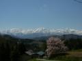 [風景・景観][空][桜]番所の桜(長野県上水内郡小川村)