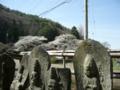 [風景・景観][桜]薬師堂(長野県朝日村)
