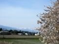[風景・景観][桜][空]梓川堤防より