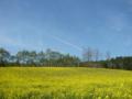 [風景・景観][空][菜の花]中山高原(長野県大町市)