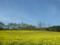 中山高原(長野県大町市)