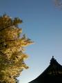 [はてなハイク][紅葉]仏法紹隆寺