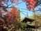 温泉寺(長野県諏訪市)