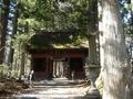 [神社・仏閣][森林]戸隠神社・奥社参道