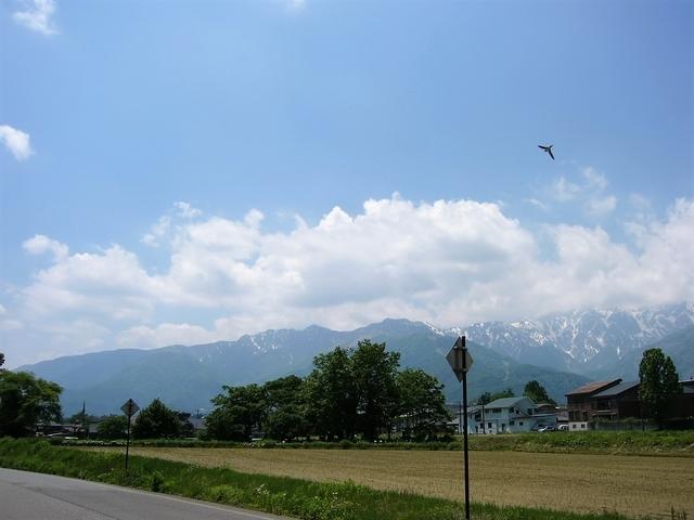 五竜岳方面を望む