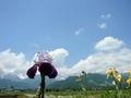 [風景・景観][空][花]白馬三山方面を望む