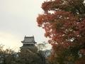 [風景・景観][史跡・名勝][紅葉]松本城