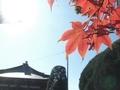 [風景・景観][神社・仏閣][紅葉]長円寺(長野県茅野市)