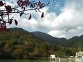 [風景・景観][紅葉]高瀬渓谷・大町ダム(長野県大町市)