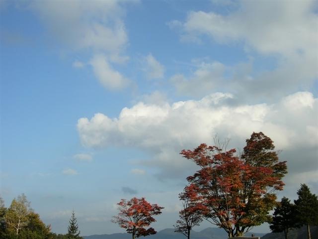 高瀬渓谷・大町ダム(長野県大町市)