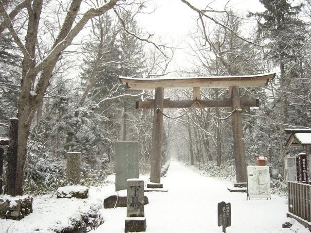 戸隠神社奥社参道(長野県長野市)