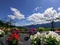 [風景・景観][空][花]池田町クラフトパーク