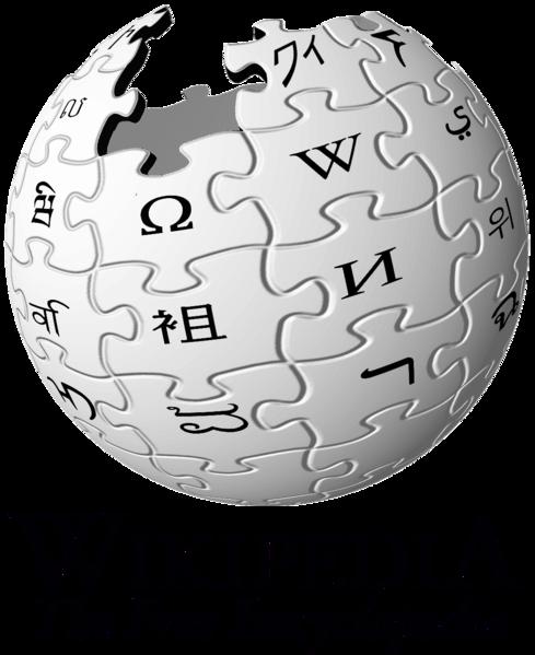 内発的動機付け,TED,Wikipedia,自主性