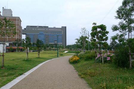 Walking Course