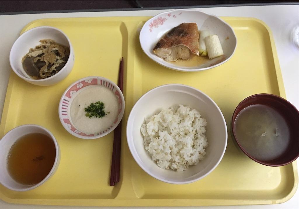 f:id:a-haruko:20190226204303j:image