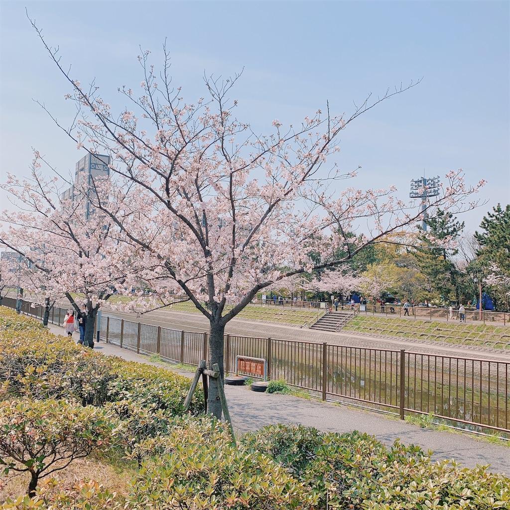 f:id:a-ishida:20190411144717j:image