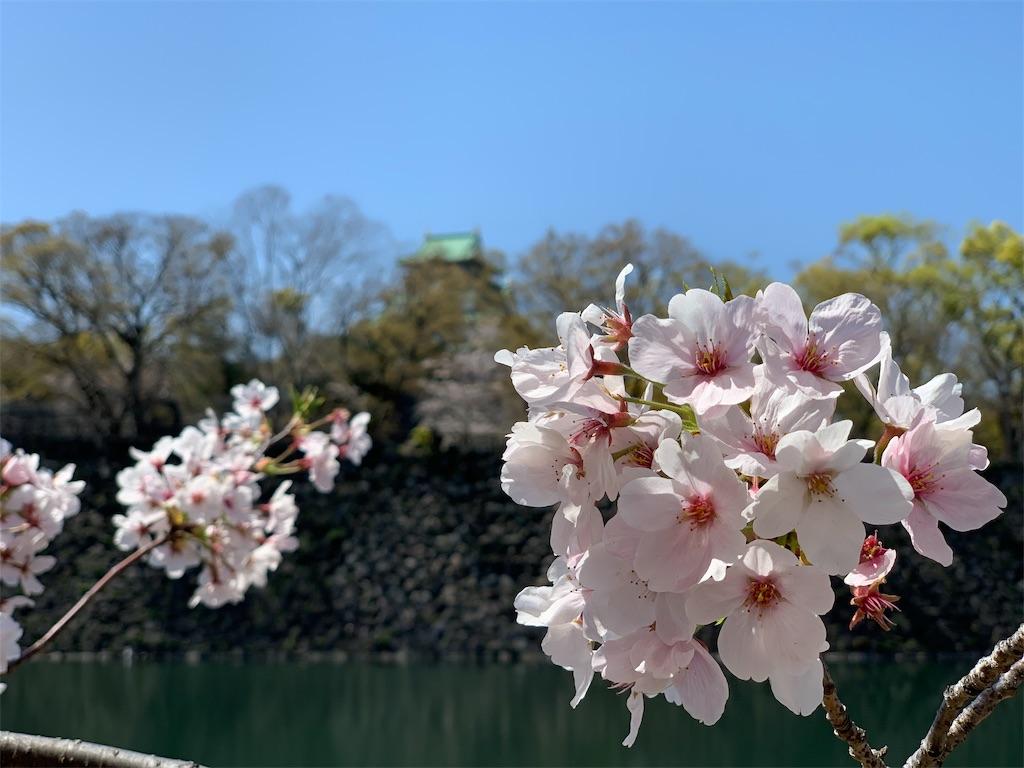 f:id:a-ishida:20190413083645j:image