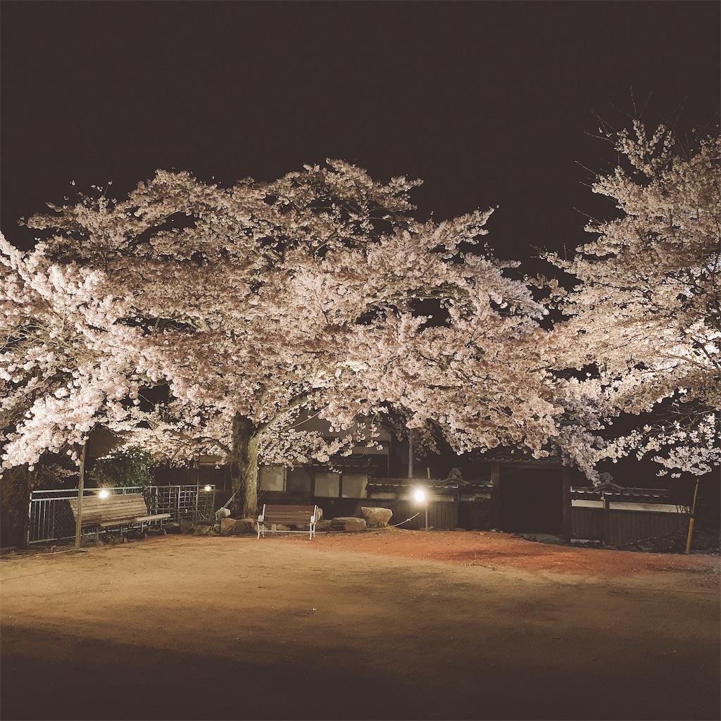 f:id:a-ishida:20190413083853j:image