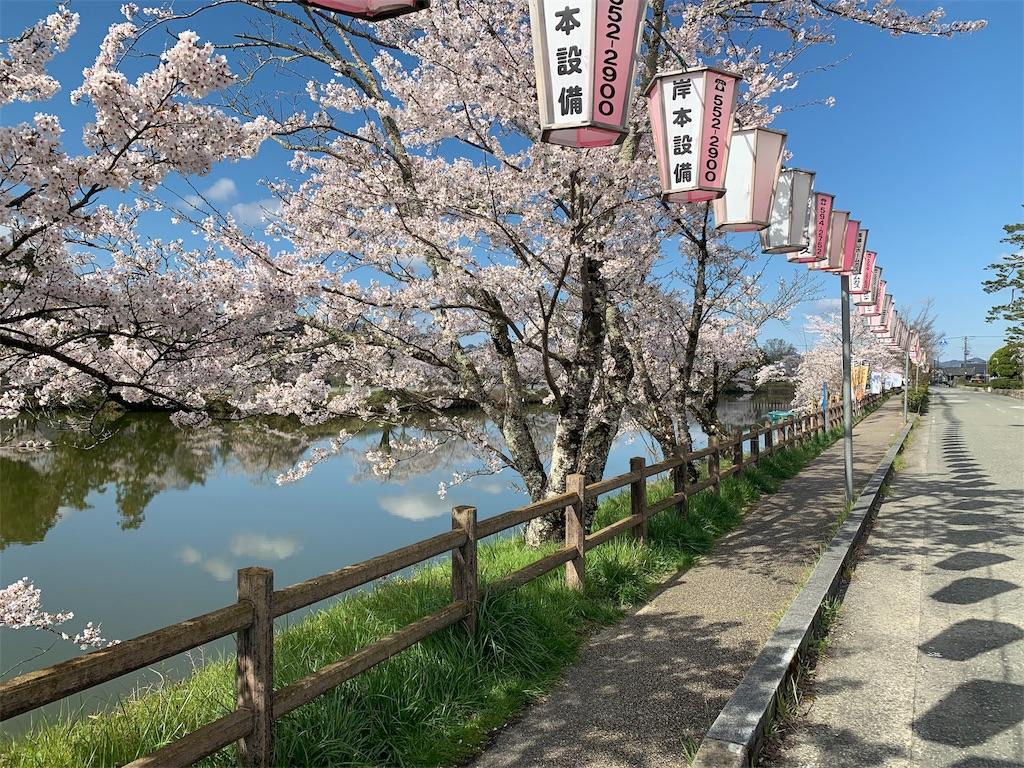 f:id:a-ishida:20190413085102j:image