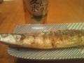 [ビール]秋刀魚