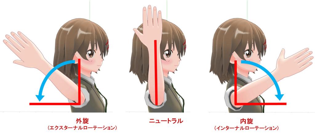腕の外旋・内旋