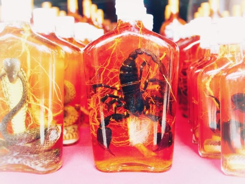 ラオスのドンサオで売られている蛇やサソリのお酒