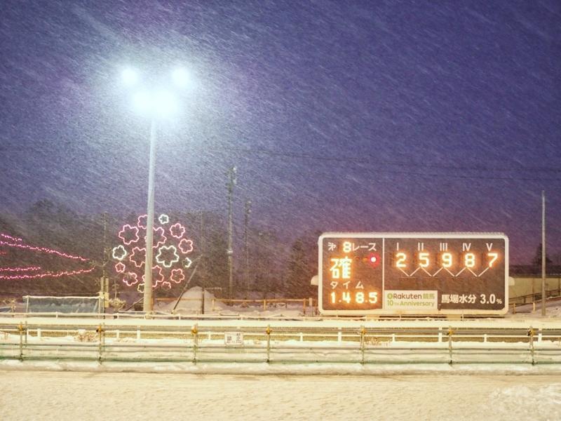 雪が降っている、冬の帯広競馬場