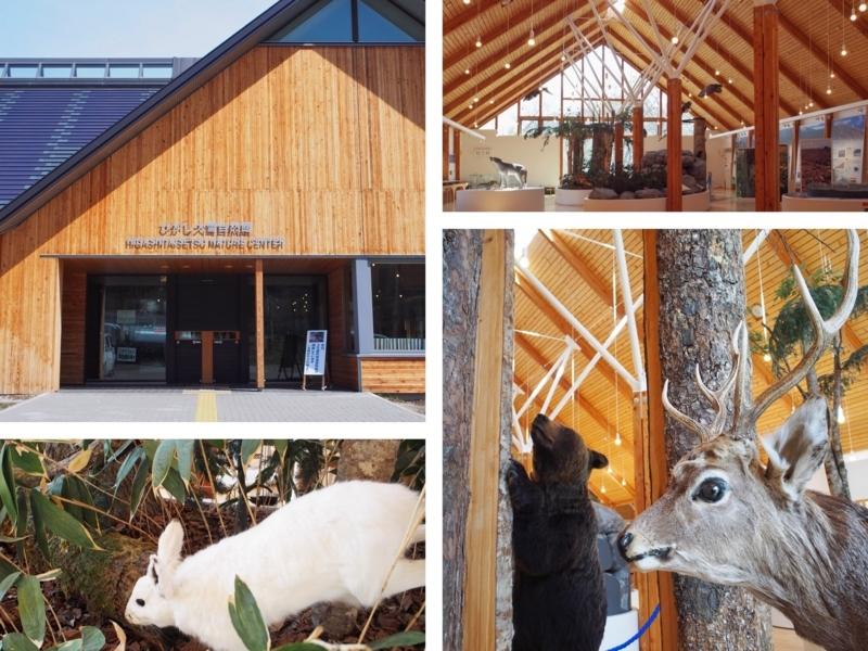 上士幌町ぬかびら源泉郷にあるひがし大雪自然館の外観と館内の様子。動物の剥製が展示されている