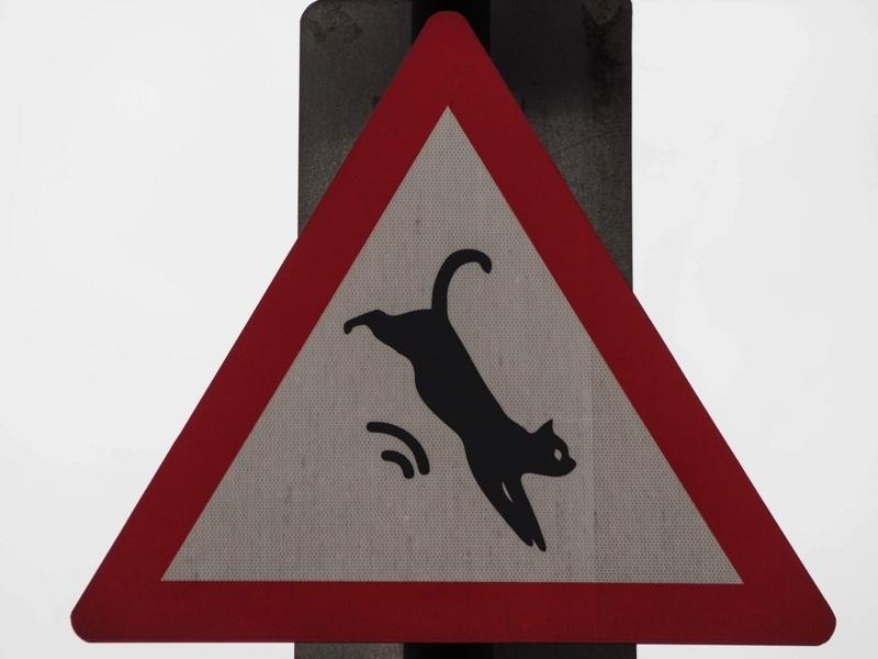 平渓線猴硐駅の猫村にある「猫飛び出し注意」の標識