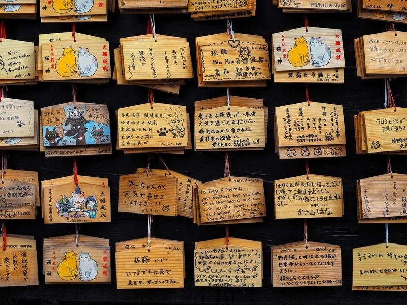 仙巌園にある猫神神社に奉納された数多くの絵馬