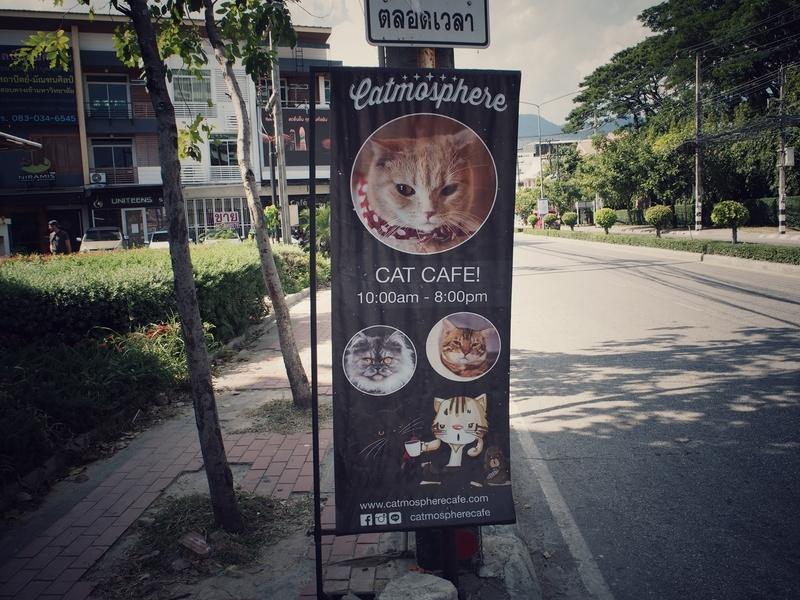 チェンマイにある猫カフェ、キャトマスフィア(Catmosphere)の看板