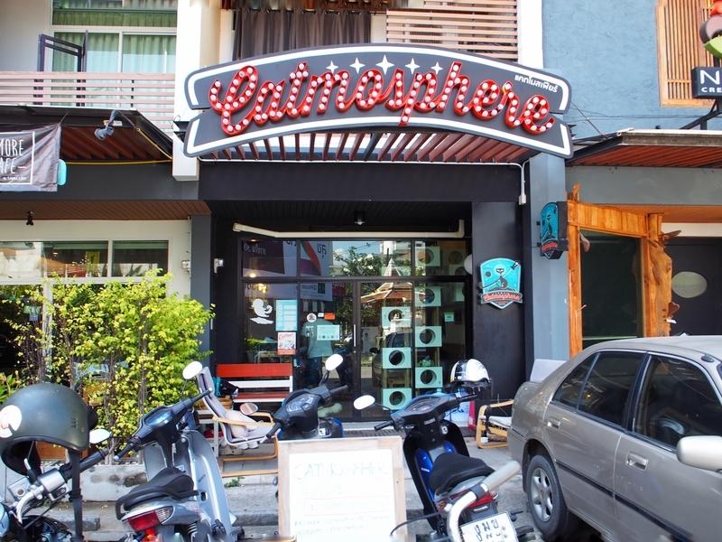 チェンマイにある猫カフェ、キャトマスフィア(Catmosphere)の入口