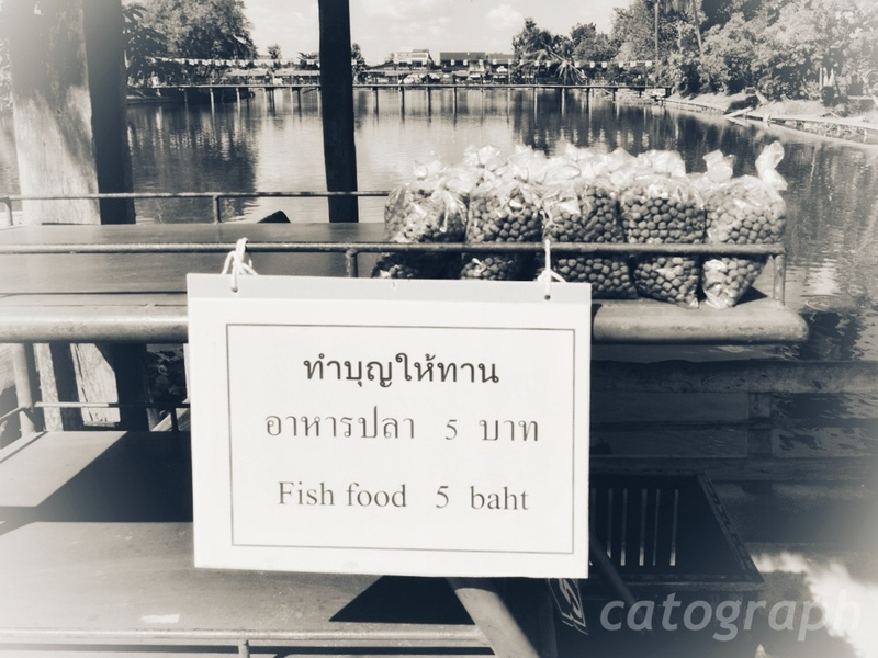 スコータイのワット・トラバン・トーン・ラーン周辺の池で売っているタンブン用の魚のえさ
