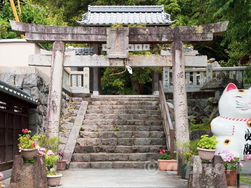 徳島県阿南市にあるお松大権現の大きな招き猫がある入り口