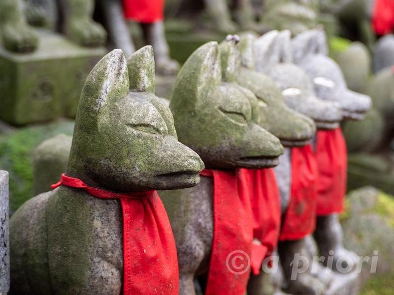 愛知県豊川市にある豊川稲荷の狐塚の狐