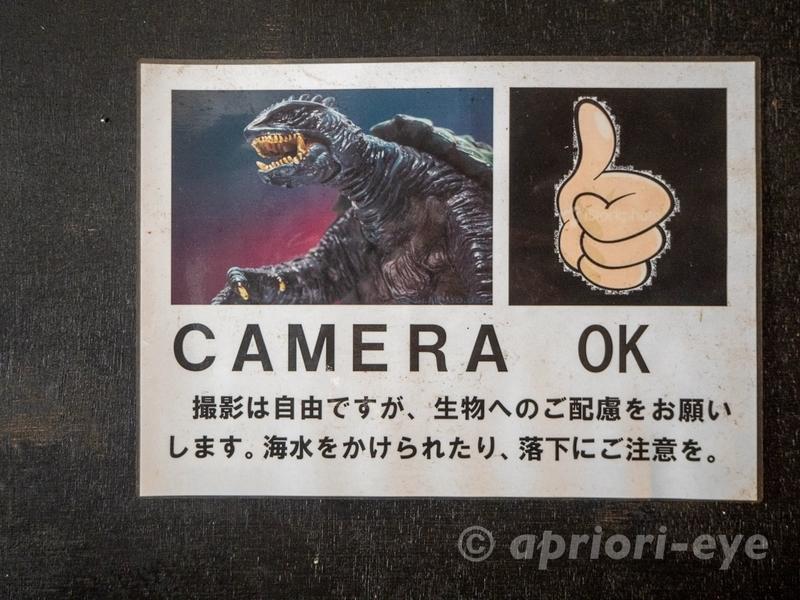 黒島研究所は写真撮影が可能