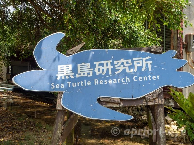 ウミガメの形をした黒島研究所の看板