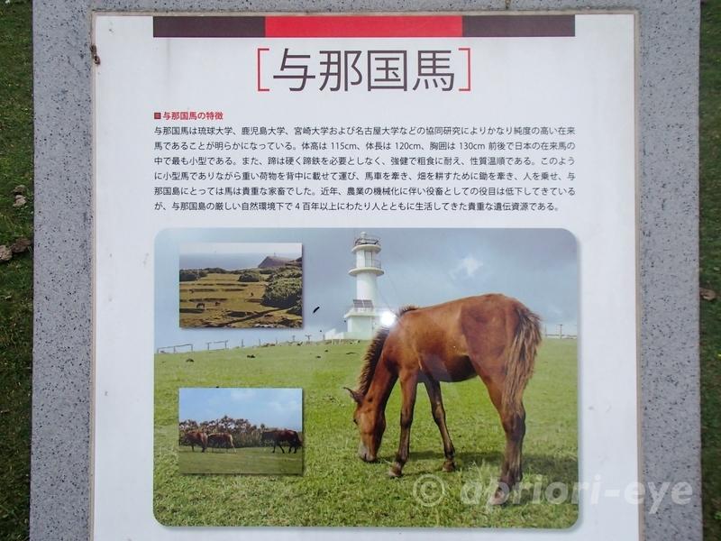 与那国馬に関するの説明書き