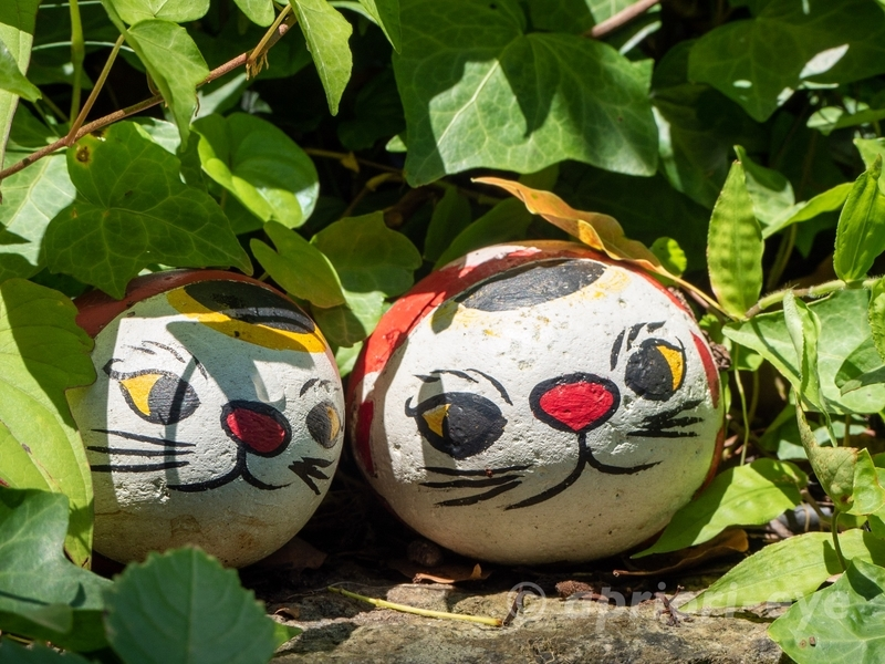尾道の猫の細道にある石に猫が描かれた福石猫