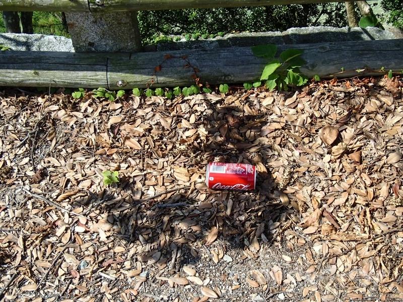 大久野島の歩道に捨てられたコカ・コーラの空き缶
