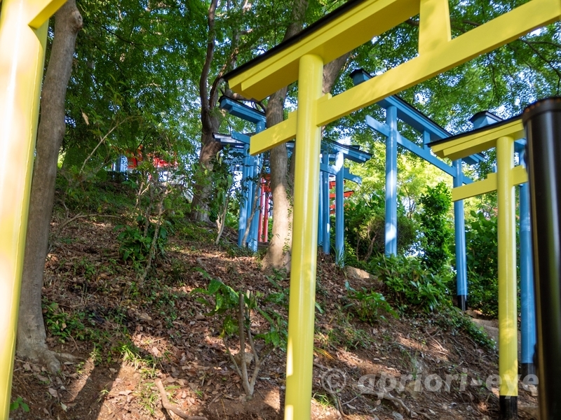 足利織姫神社の七色の鳥居である黄色と青色の鳥居