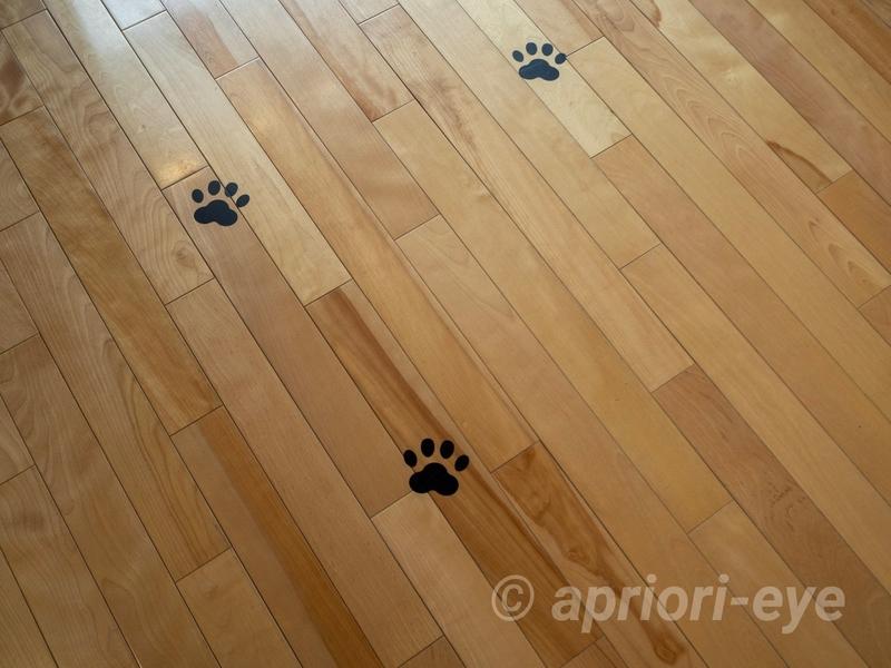 漱石山房記念館の床に描かれている黒い猫の足跡