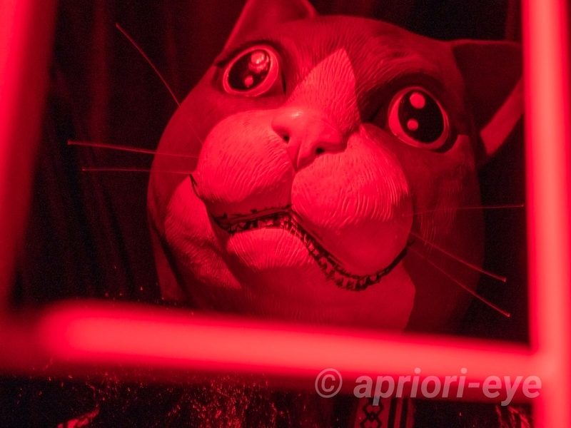 鬼が島の赤い光に照らされた猫のお化け