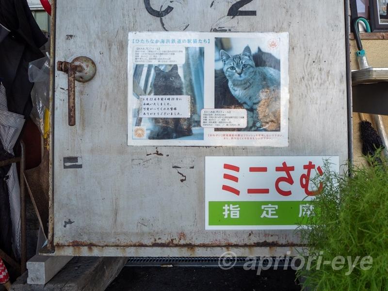 那珂湊駅にある駅猫の「ミニさむ」のためのえさ置き場