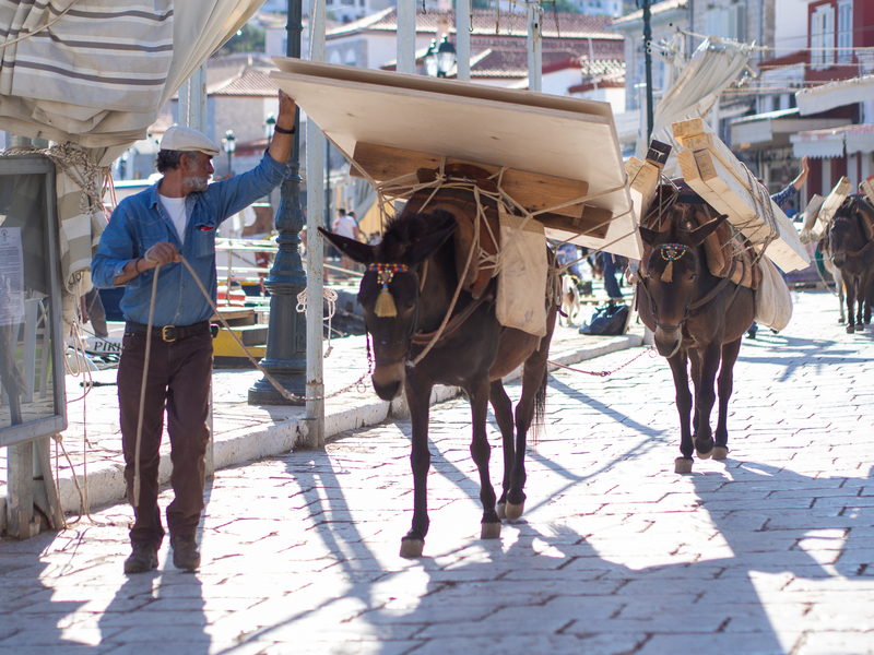 物を運ぶイドラ島のロバ