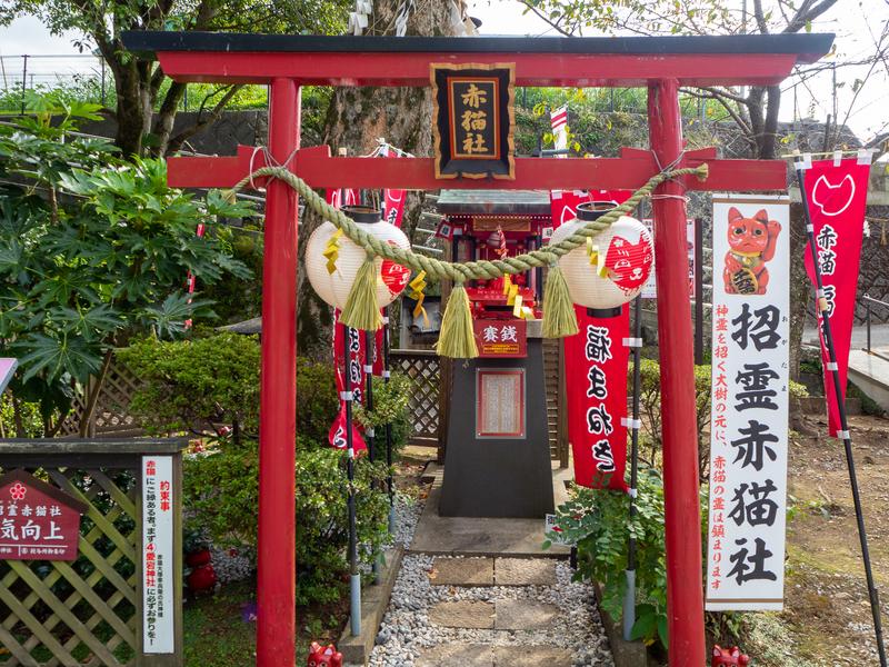 臼杵市にある福良天満宮の赤い赤猫社の鳥居