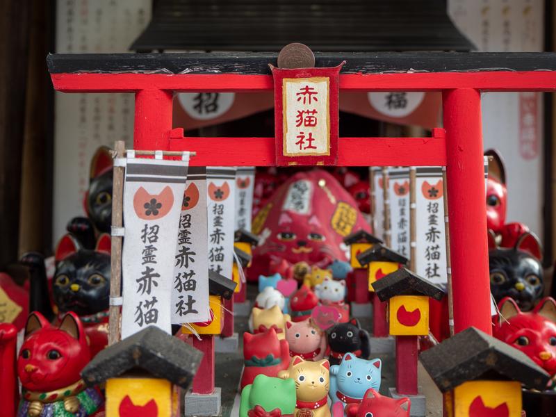 臼杵市にある福良天満宮の赤猫社の中の赤い小さな鳥居