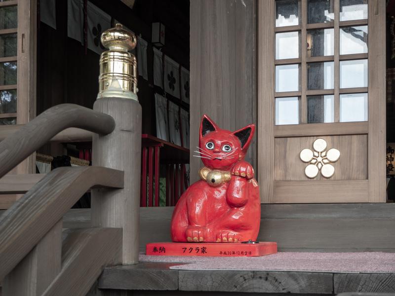臼杵市にある福良天満宮の境内に飾られた赤い招き猫