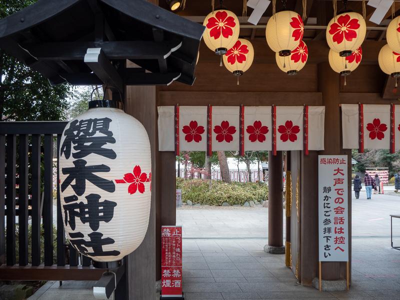 大きな提灯がぶら下がっている櫻木神社の入口