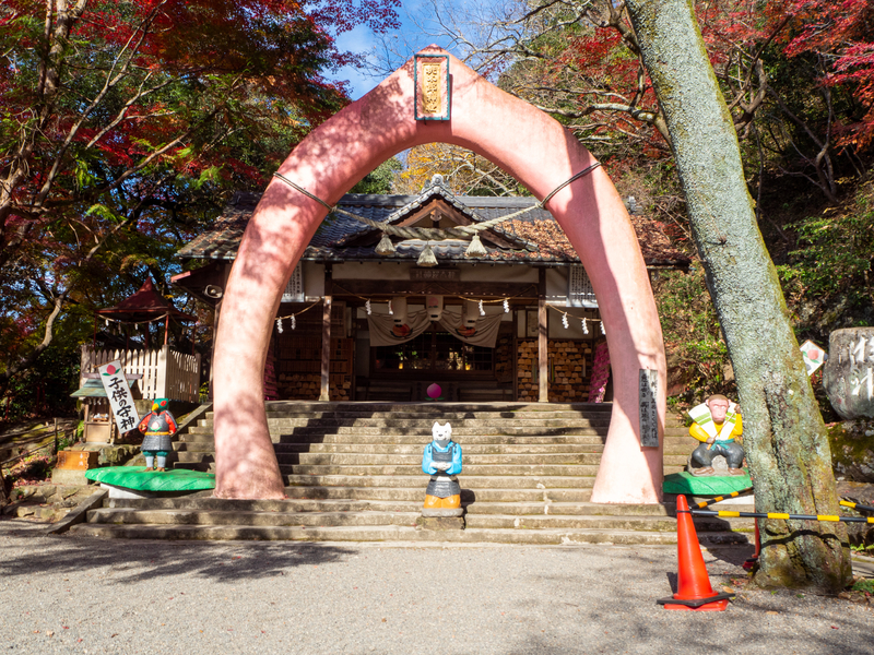 犬山市にある桃太郎神社にある芽の輪。しめ縄の代わりにピンク色の桃の形をしたモニュメントが設置されている